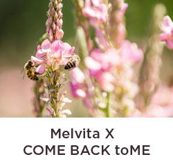 Melvita x 城市養蜂是bee要的>