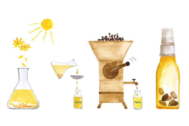 Nos huiles végétales