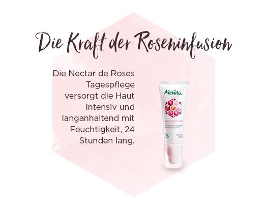 die kraft der roseninfusion
