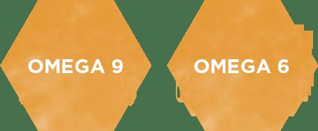 人體必需脂肪酸OMEGA9 OMEGA-6