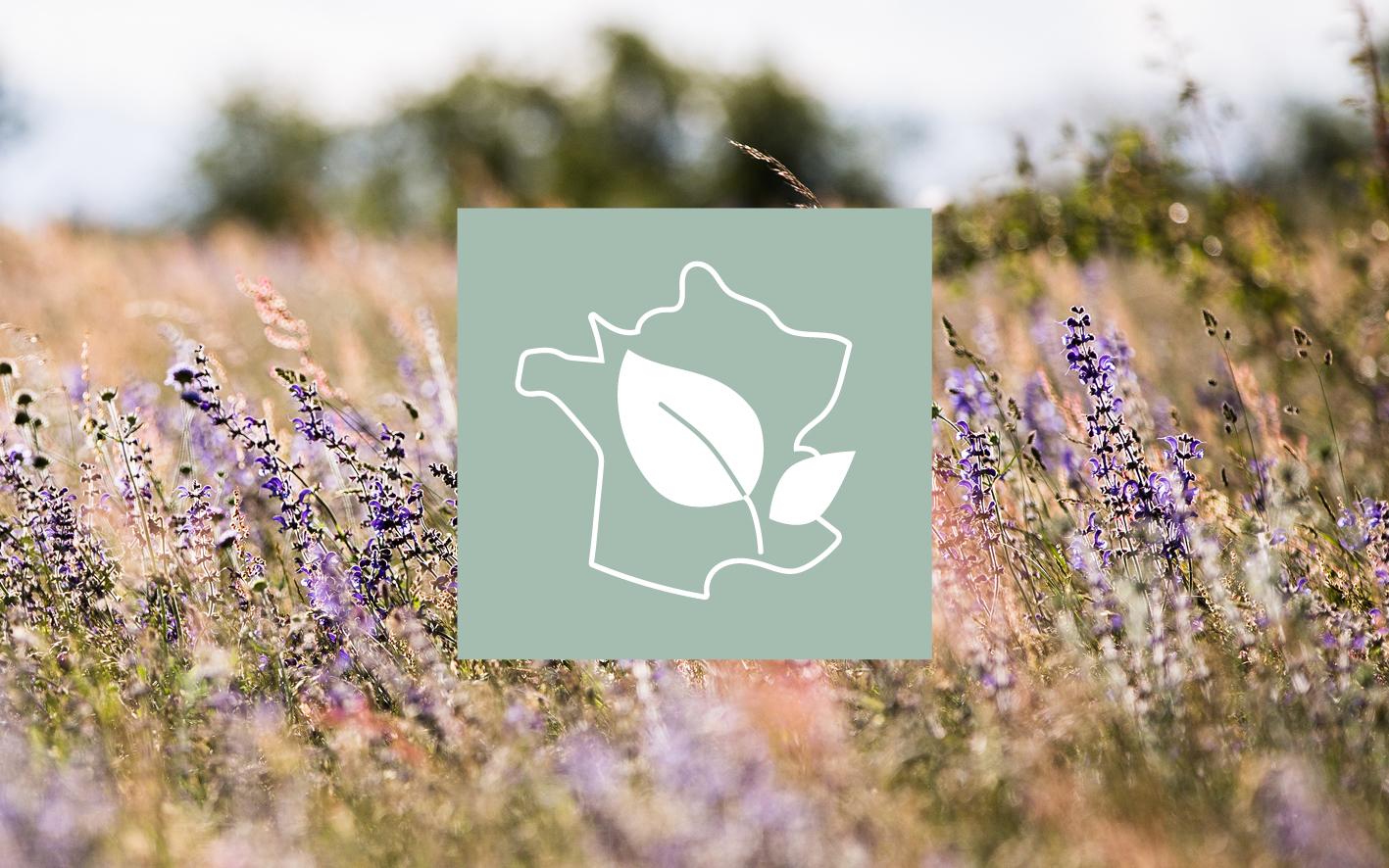 ekološka kozmetika Ardeche Melvita