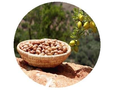 huile végétale d argan bio Melvita