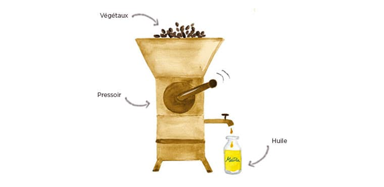 huile végétale cosmetique bio