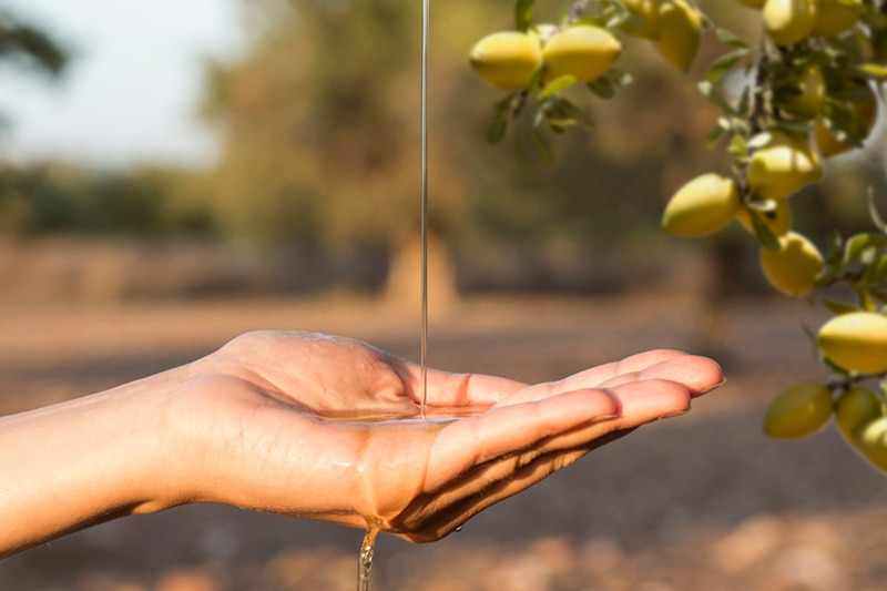 Argan: our precious oil