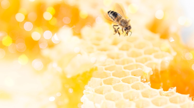 Honey: our heritage