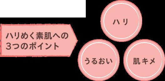ハリめく素肌への3つのポイント